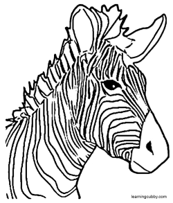 Zebra Coloring Pages  Learning CubbyLearning Cubby